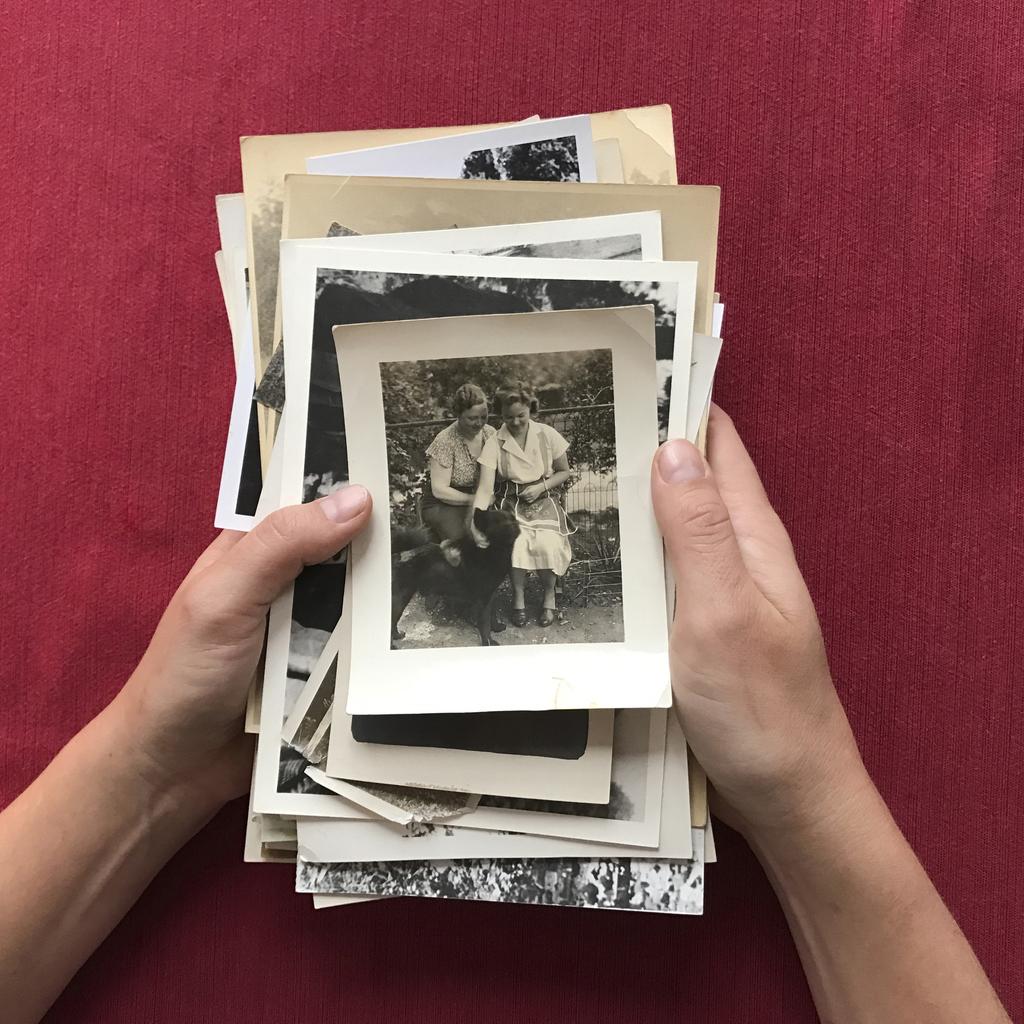 Vad är genealogi?